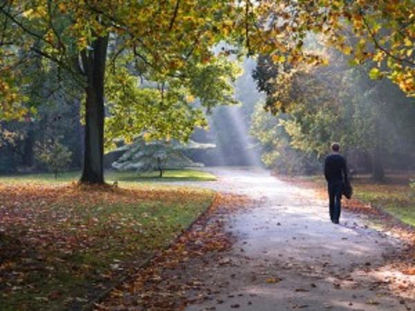 O Mindfulness pode ser treinado andando ou fazendo outras atividades.